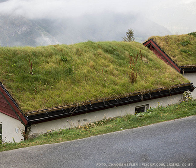 Bleche im Landschaftsbau – Schutz und Dekoration aus Metall